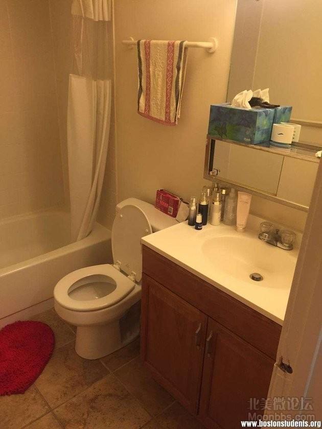 波士顿大学附近 复式公寓出租 独立卫生间